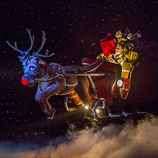 Rob the Reindeer & Sleigh - animatronic reindeer for pantomimes