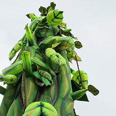 Animatronic Beanstalk for hire